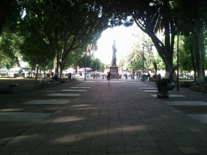 Paseo Bravo is a Large Park